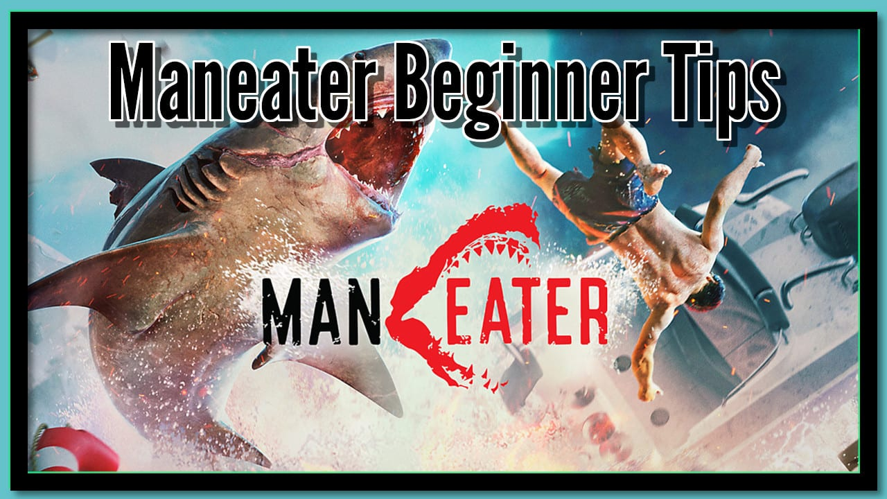 """Featured image for """"Maneater Beginner Tips 
